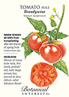 Tomato Pole Brandywine HEIRLOOM Seeds