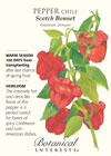 Pepper Chile Scotch Bonnet HEIRLOOM Seeds