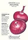 Onion Bulb Flat of Italy HEIRLOOM Seeds
