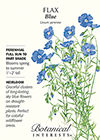 Flax Blue HEIRLOOM Seeds