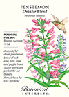 Penstemon Dazzler Blend Seeds