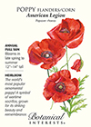 Poppy Flanders/Corn American Legion HEIRLOOM Seeds