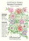 Cottage Pinks Rainbow Loveliness HEIRLOOM Seeds