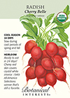 Radish Cherry Belle Organic HEIRLOOM Seeds
