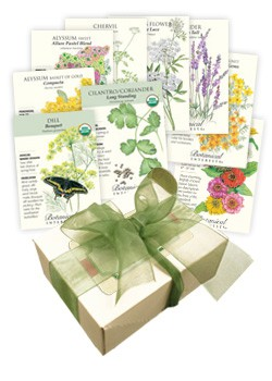 Beneficial Insect Welcome Seed Collection