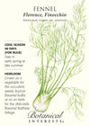Fennel Florence Finocchio HEIRLOOM Seeds