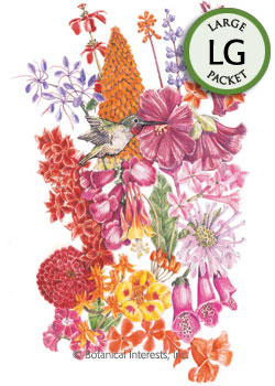 Flower Mix Hummingbird Haven Seeds (LG)
