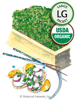 Microgreens Umami Asian Blend Organic Seeds (LG)