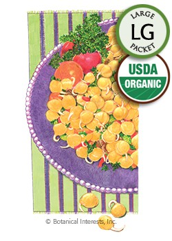 Sprouts Garbanzo Bean Organic Seeds (LG)