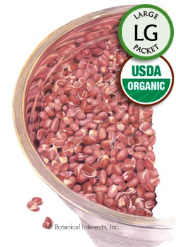 Sprouts Adzuki Bean Organic HEIRLOOM Seeds (LG)