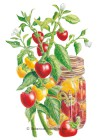 Pepper Sweet Cherry Blend HEIRLOOM Seeds