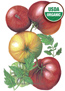 Tomato Pole Cherokee Purple Organic HEIRLOOM Seeds