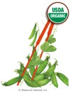 Pea Snow Oregon Sugar Pod II Organic Seeds
