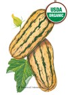 Squash Winter Delicata Honeyboat Organic Seeds