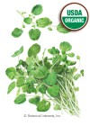 Watercress Organic HEIRLOOM Seeds
