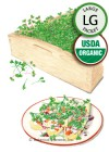 Microgreens Be Mellow Blend Organic Seeds (LG)